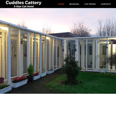 Cuddles Cattery Homepage - Affordable website designed by Pagecrafted