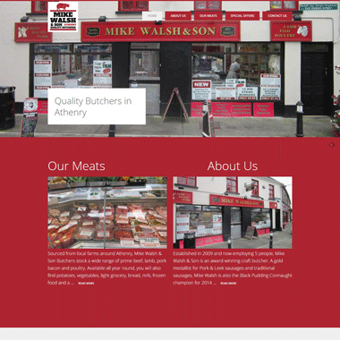Mike Walsh & Son - website designed by Pagecrafted