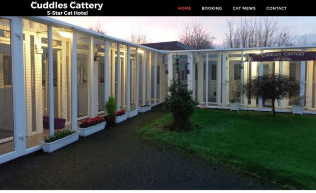 Cuddles Cattery Homepage - Designed by Pagecrafted