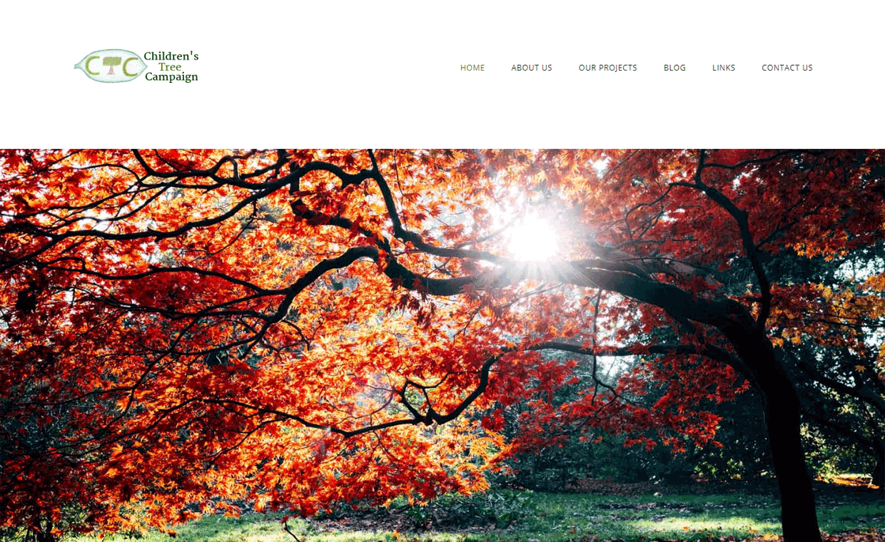 Pagecrafted Affordable websites Galway - Children's Tree Campaign