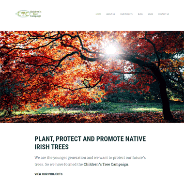 Pagecrafted Affordable websites Galway - Children's Tree Campaign Homepage