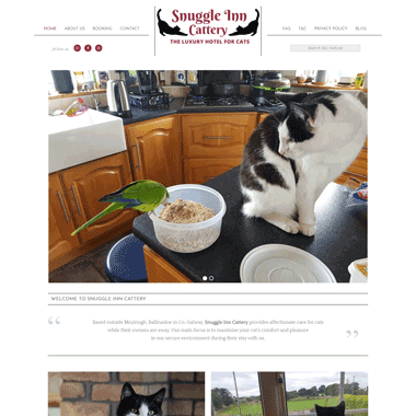 Pagecrafted affordable websites Galway - Snuggle Inn Cattery