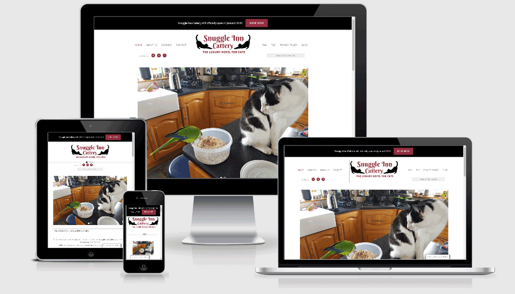 Pagecrafted affordable websites Galway - Snuggle Inn Cattery Mobile
